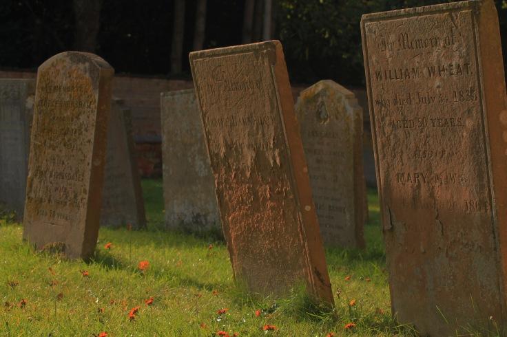 Secrets of the Grave