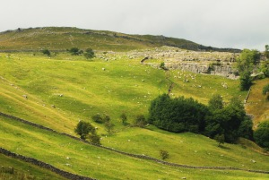 View towards Malham Tarn, Yorkshire Dales, UK