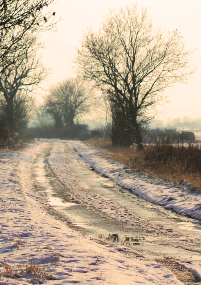 winter lane portrait