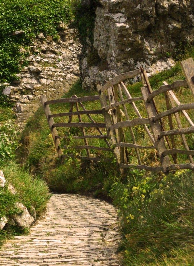path trough ruins