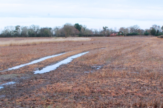 puddled tracks to house