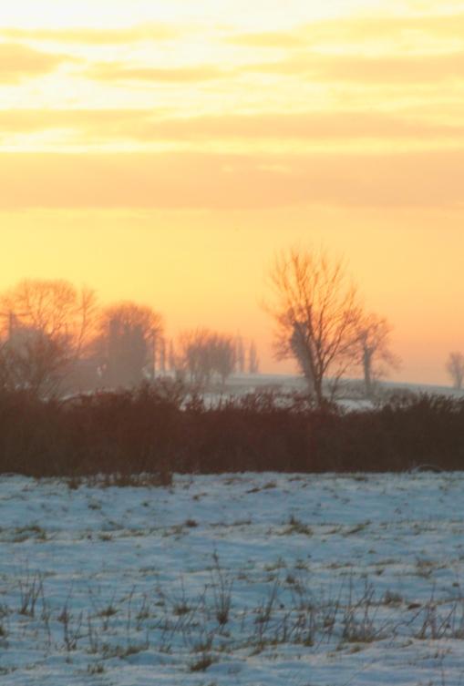 snowy sunset2