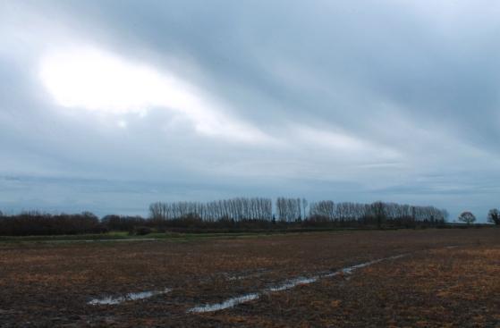 sweeping cloud