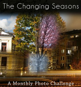 thechangingseasons
