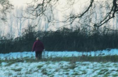 walker in snowy field