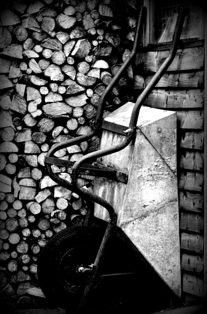 woodpile b and w