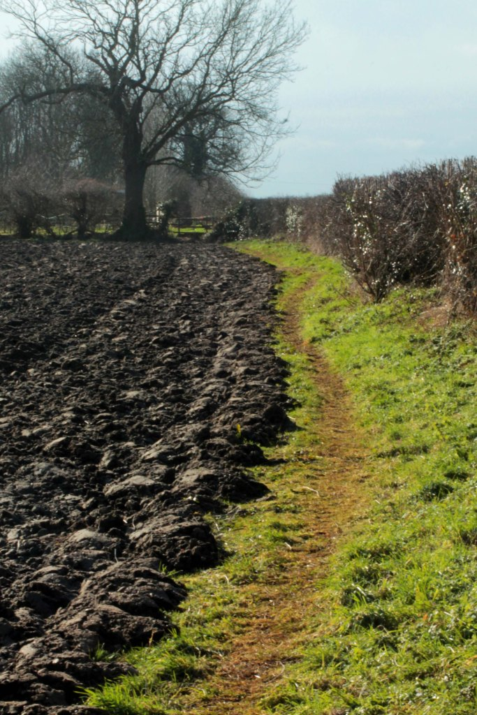 path by ploughd field2