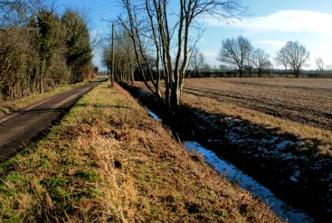 road and dyke