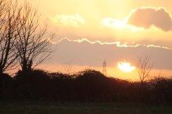golden sunset4