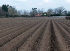 ploughed field to house