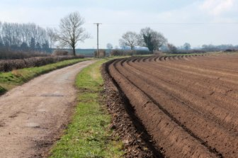 ploughed field with path