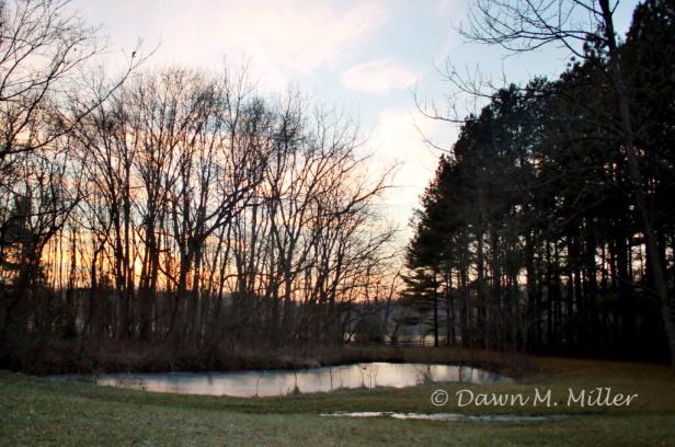 Photo Prompt: © Dawn M. Miller