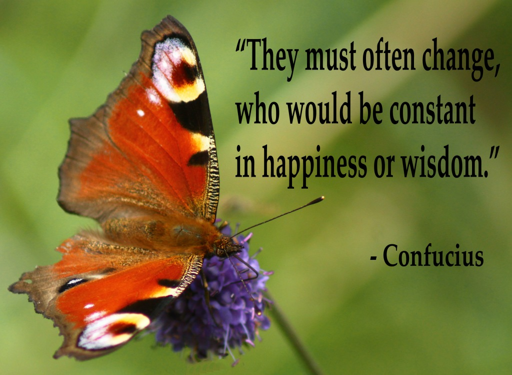 butterfly with confucius quote