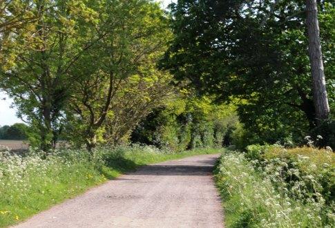 lane2