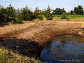 irrigation pond2