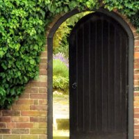 Wordless Wednesday: Secret Garden