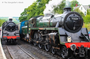 two trains at nymr