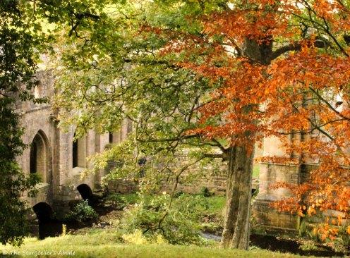 ruins viewed through trees