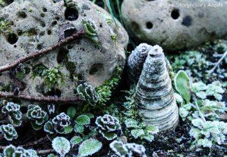 Frosty rock garden