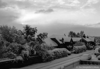 snowy street small