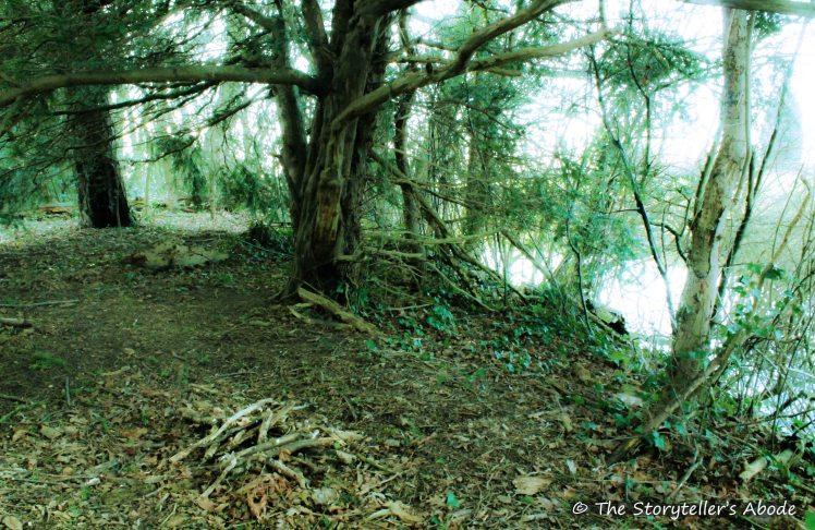 streamside camp week one small 2