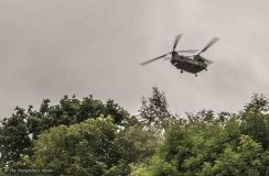 Chinook over trees