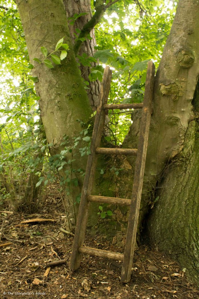 ladder 5 July