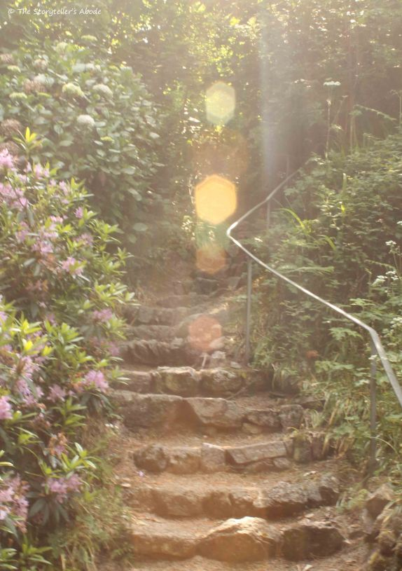steps with sunburst.jpg