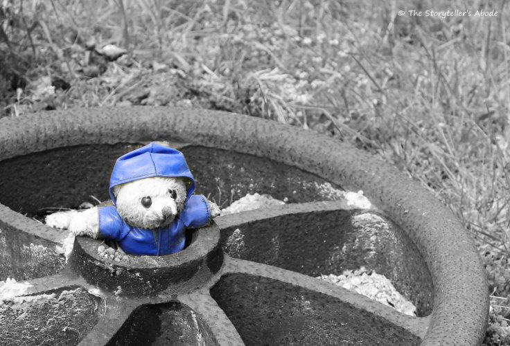 Bear in Wheel.jpg