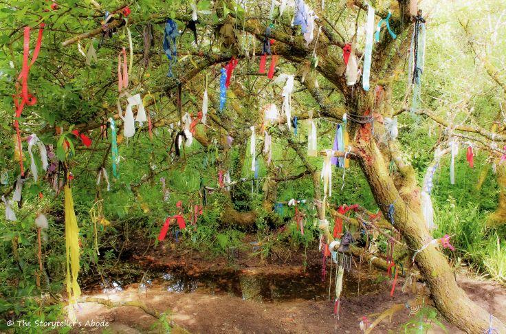 Cloutie Tree 5.jpg