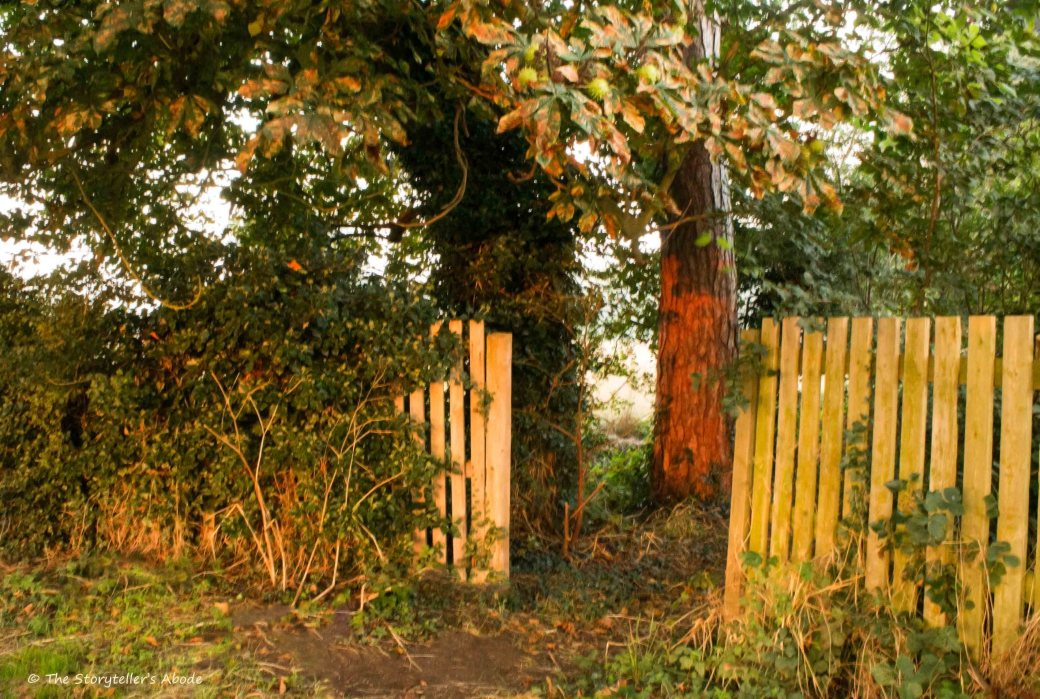 Dawn Lit Entrance 2.jpg