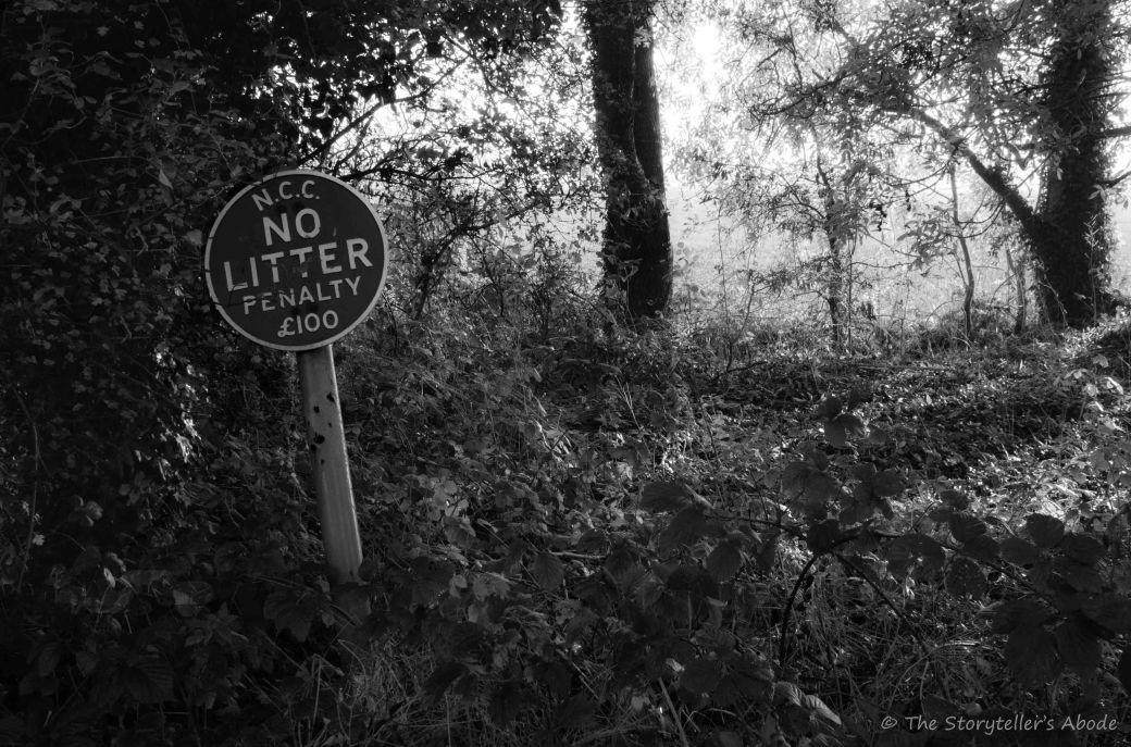 No Litter Sign 2.jpg