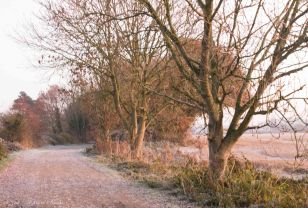 frosty-lane-in-late-november-2