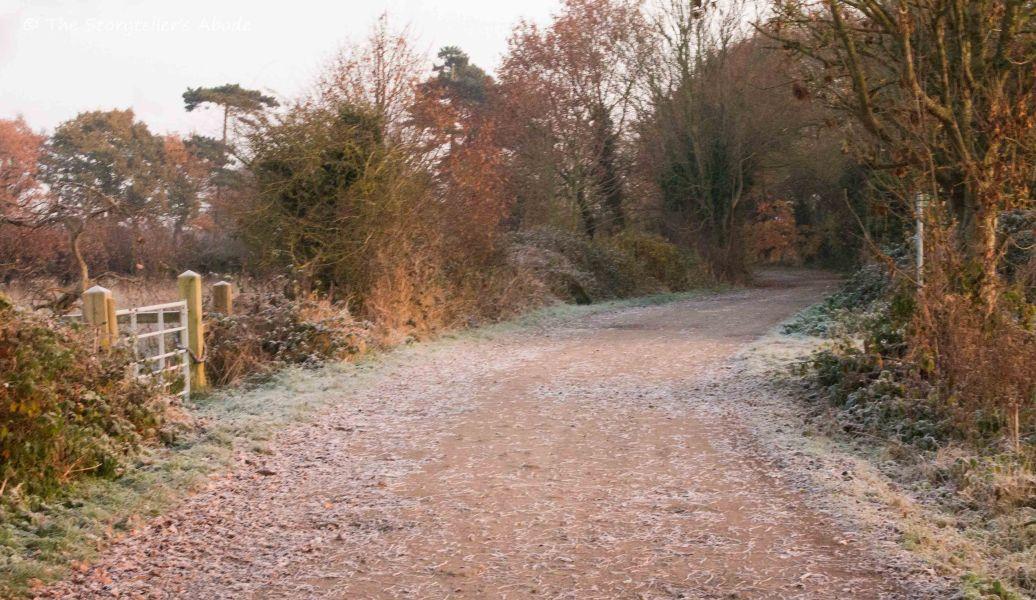 frosty-lane-in-late-november