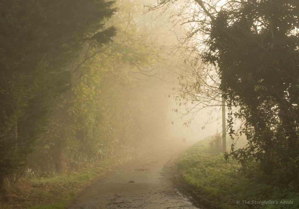 misty-lane-2