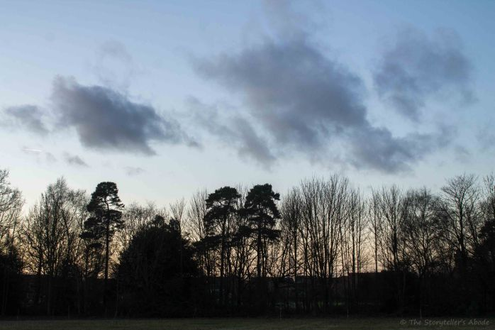 clouds-over-trees