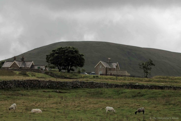 yorkshire-dales-view