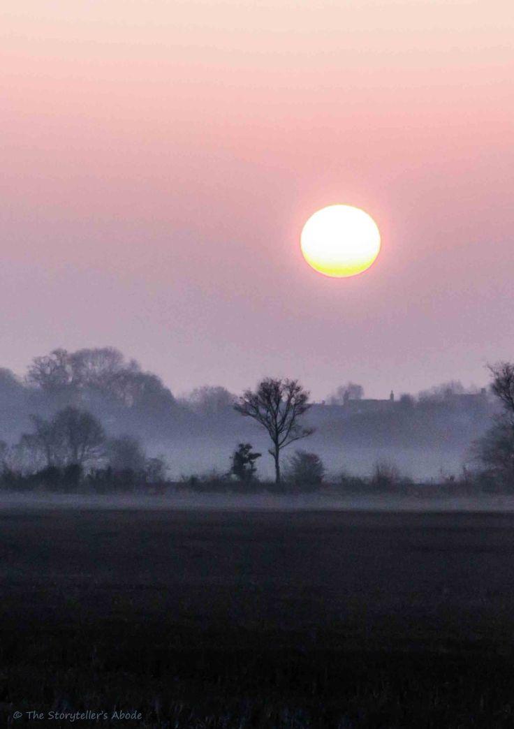 Dawn 5.jpg