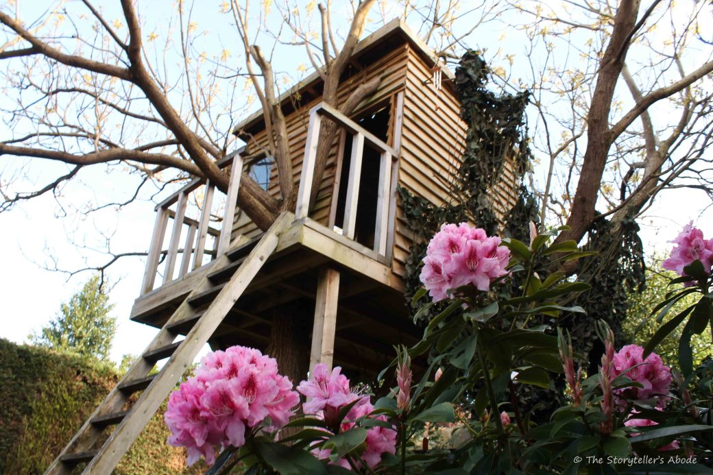 Tree House Behind Rhododendron 2
