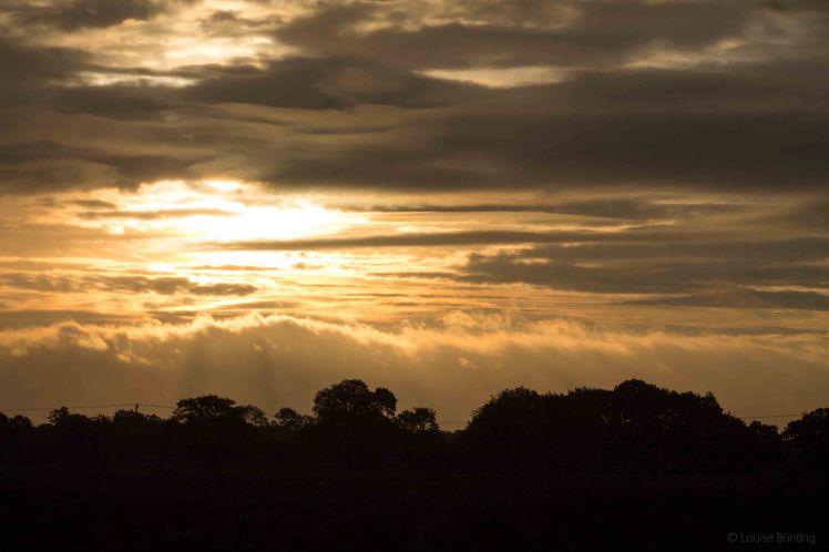 Dawn-Lit Clouds 2