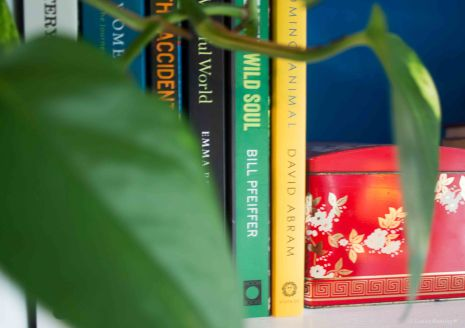 Bookshelf through growth