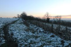 snowy path6