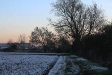 snowy path7