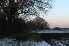 snowy path9
