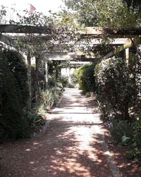 Path through vicarage garden