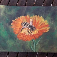 Honey Bee in Oil Pastel