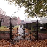 Autumn's Portal
