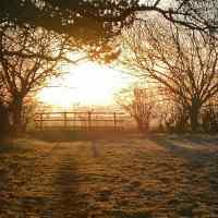 February Dawn